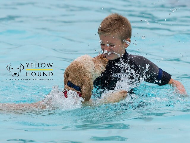 Dog Swim - Sunday - EARLY BIRD SALE!
